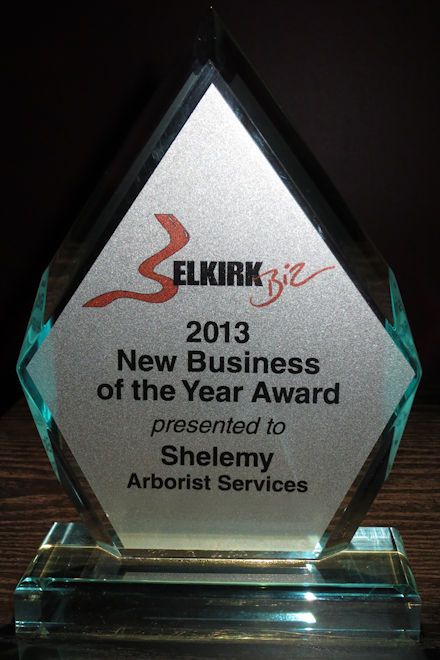 Guy Shelemy Business Award